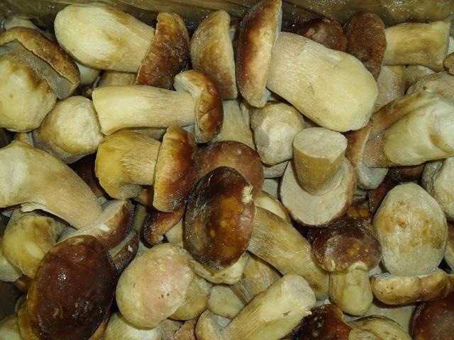 Funghi Porcini interi Extra Granselez. M kg.6