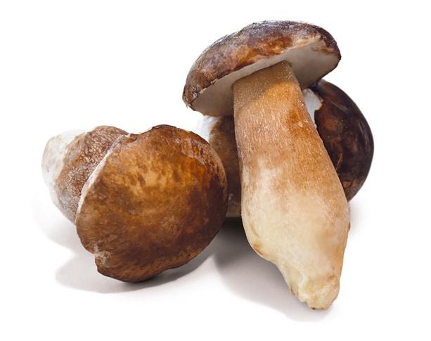 Funghi porcini interi extra Kg 1