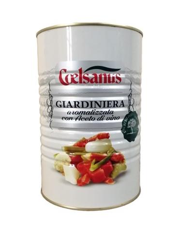 Giardiniera aceto Coelsanus latta kg. 4